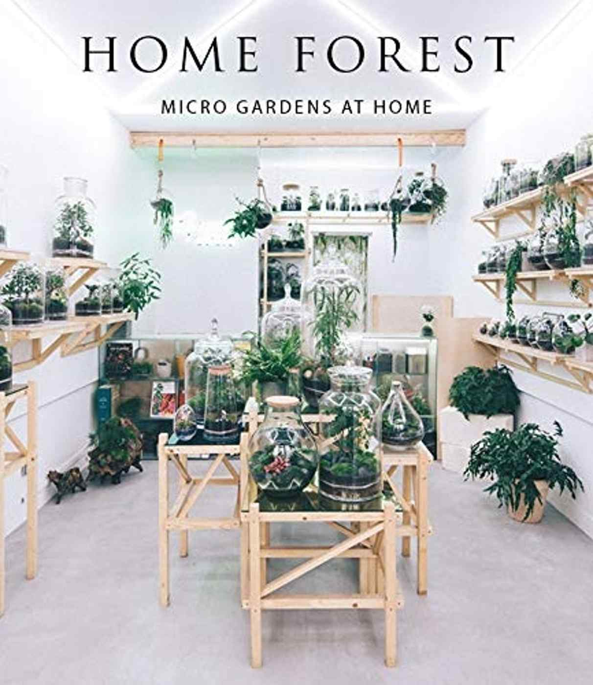 HOME FOREST, INTERIOR MICRO GARDENS
